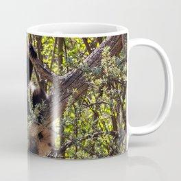 Cute baby panda bear Coffee Mug