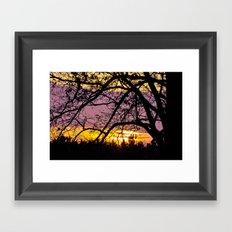 Branches Beholding Beauty Framed Art Print
