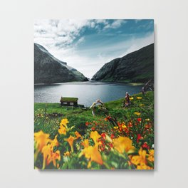 cottage at faroe Metal Print
