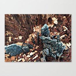 A tree asking, would you explore with me? Canvas Print