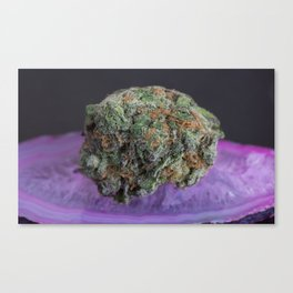 Grape Ape Medicinal Medical Marijuana Canvas Print