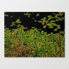 Sprinkles of green Canvas Print