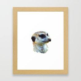 Hakuna Timone Framed Art Print