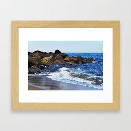 Plum Island Framed Art Print