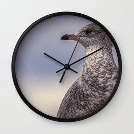 Johnathan Livingston Seagull Wall Clock