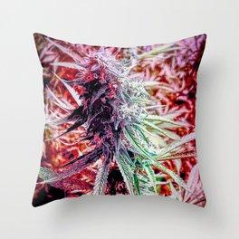 Candy (cannabis sugar) Throw Pillow
