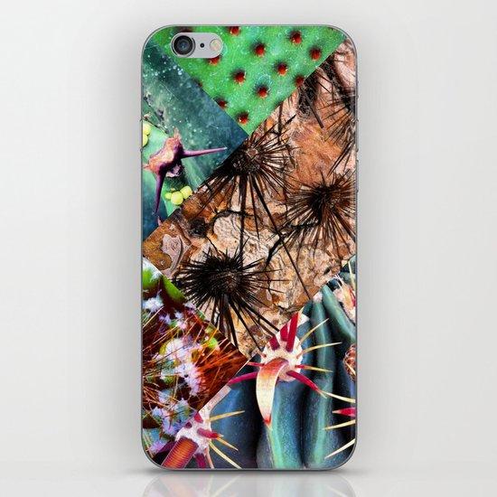 Cactus Collage iPhone & iPod Skin