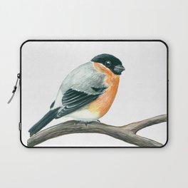 Bullfinch bird Laptop Sleeve