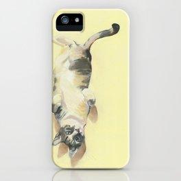 "Frankie - 9"" x 12"" Oil on Panel Cat Portrait iPhone Case"