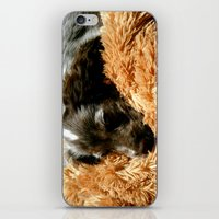 coco iPhone & iPod Skins featuring Coco by Sandra Ireland Images