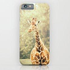 Giraffe In The Rain iPhone 6s Slim Case