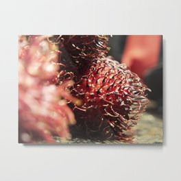 Rambutan #2 Metal Print