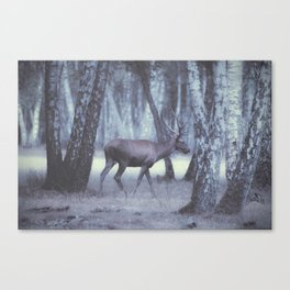 Rambouillet Forest I Canvas Print