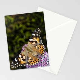 Painted Lady Butterfly 0923 Stationery Cards