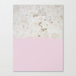 Redux V Canvas Print