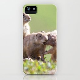 Watercolor Prarie Dog 06, Boulder County, Colorado, Gimme a Kiss Love iPhone Case
