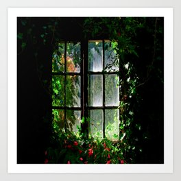 Secret garden window Art Print