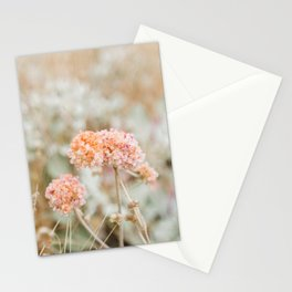 Blooming in the Dunes Stationery Cards