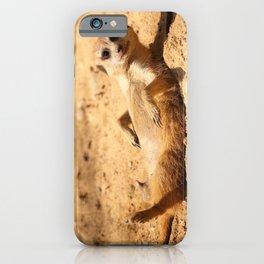 Meerkat Suricat suricatta Sunbathing #decor #society6 #buyart iPhone Case