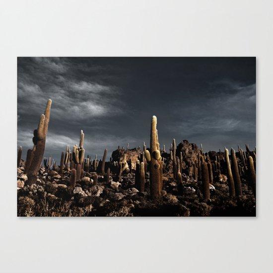 Cactus in Incahuasi island Canvas Print
