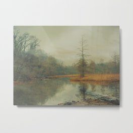 Winter Fog on Theodore Roosevelt Island Metal Print
