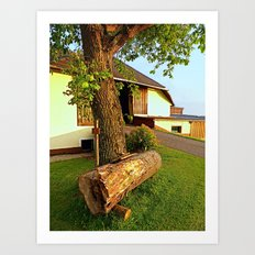 Tree trunk bench on a summer evening | landscape evening Art Print
