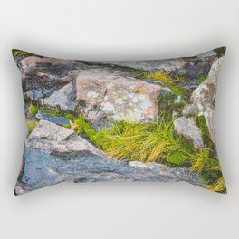 Artist Point Trail, Grand Marais, Minnesota 14 Rectangular Pillow