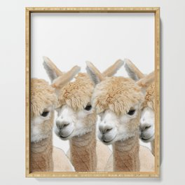 Alpaca Line Up Serving Tray