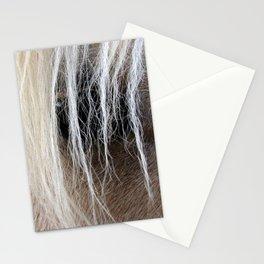 Palomino Mane and Eye Stationery Cards