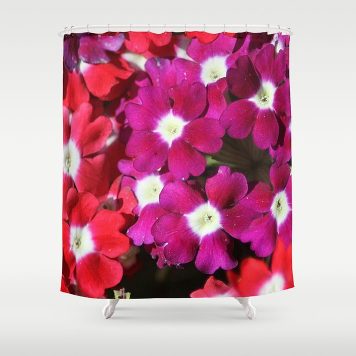 verbena flowers Shower Curtain