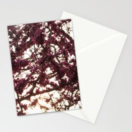 Magenta Stationery Cards
