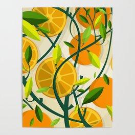 Mediterranean Oranges Poster