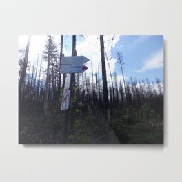 Which way to choose? Metal Print