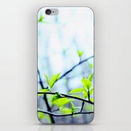Spring pastel iPhone Skin