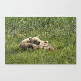 Siblings Make Good Pillows - Bear Cubs 1 Canvas Print