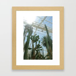 Cactus Glasshouse, down in the greenhouse with the cacti Framed Art Print