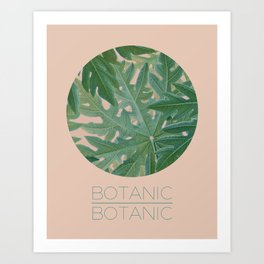 BOTANIC BOTANIC Art Print