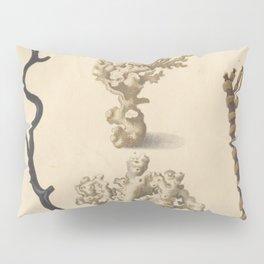 Naturalist Coral Pillow Sham