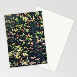 Plant Wall Two Stationery Cards