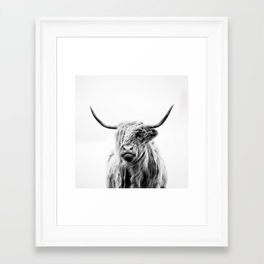 portrait of a highland cow Framed Art Print