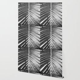 Natural Background 59 Wallpaper