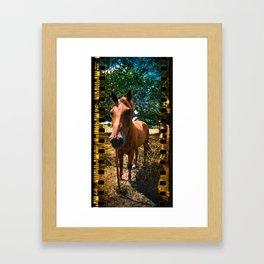 Up Close Horse Framed Art Print