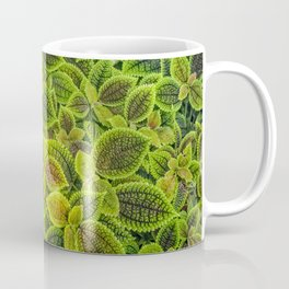 Friendship plant Coffee Mug