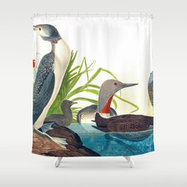 Red-Throated Diver Duck Shower Curtain