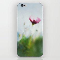 Sunny Sonja iPhone & iPod Skin
