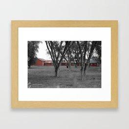 Lonecow Framed Art Print