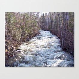 Swollen Creek Runs Wild Canvas Print