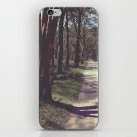 safari iPhone & iPod Skins featuring Safari by radiantlee