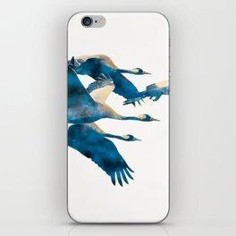 Beautiful Cranes in white background iPhone Skin
