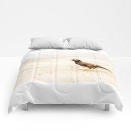 Treurmaina Comforters